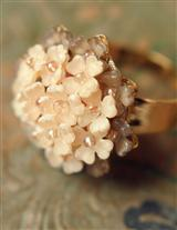 Colleen Toland Cream Of Roses Ring