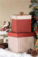 Polka Dot Boxes - Set Of 2