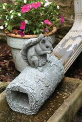 Squirrel Downspout