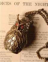 Hedwig Owl Locket