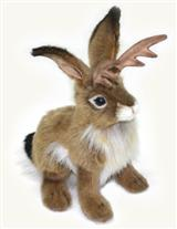 Jezebel The Jackalope