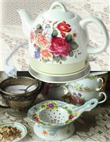 Tea Strainer And Electric Kettle - Special Prices!