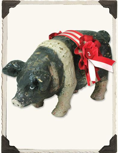 2Nd Place Hampshire Prize Pig