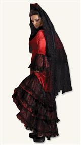 Flamenco Dancer Costume