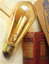 Edison's Inspiration - Early Light Bulb (Pair)