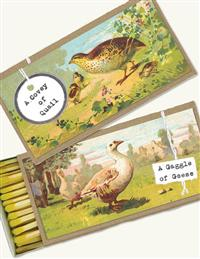 Geese & Quail Matches (Set Of 3)