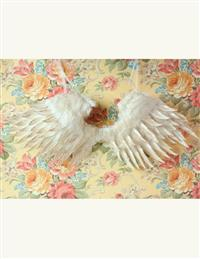 Celestial Angel Wings