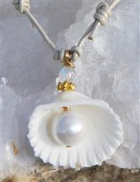 Petite Angelwing Shell Necklace