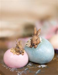 Bunny Hatchlings (Pair)