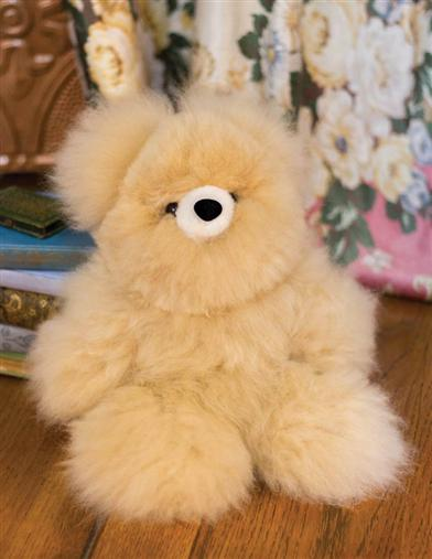 A Cream-colored Teddy