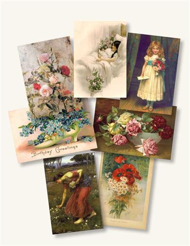 All Occasion Enclosure Cards (Asst Of 12)