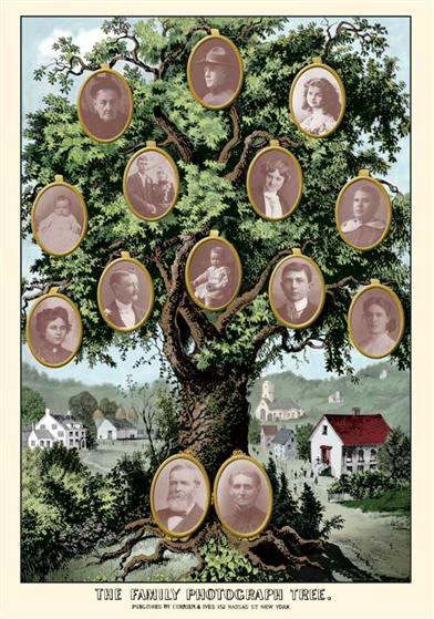 Currier & Ives Family Tree Matte