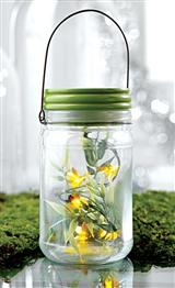Fireflies In-a-jar